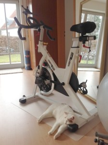 My Indoor Bike and my Outdoor Cat ;-)