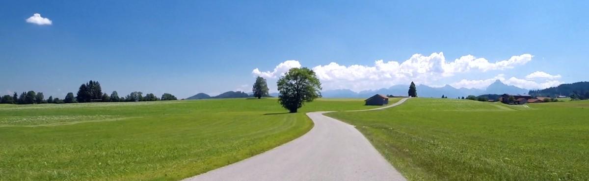 HELP - Indoor Cycling Videos